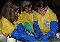 Port Arthur oil spill wildlife response DVIDS1094181.jpg