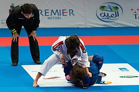 Image illustrative de l'article Jiu-jitsu brésilien
