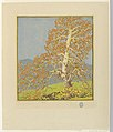 Print, The Sycamore, 1919 (CH 18563281).jpg