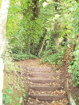 Public footpath to Caldy Hill 3