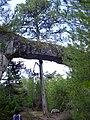 Puente de piedra ( Ciudad Encantada ) - panoramio.jpg