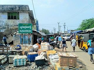 Pulicat town in Tamil Nadu, India