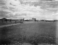 Queensland State Archives 1859 Beef cattle pastures and stock yards December 1955.png