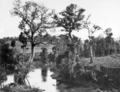 Queensland State Archives 264 Mary River Crossing at Kandanga Upper c 1931.png