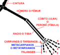 Quiridio.png