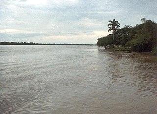 Apure River river in Venezuela