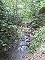 Río Negro, Aller.JPG