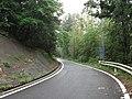 R377香川県さぬき市五名 狭小部.jpg