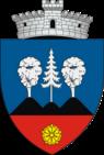 ROU SV Sadova CoA.png