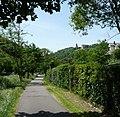 Radweg nach Grethen - panoramio.jpg