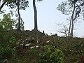 Raigaun, Nepal - panoramio.jpg