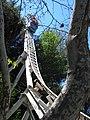 Revolution at Six Flags Magic Mountain (13209006954).jpg