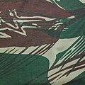 Rhodesian Brushstroke pattern.jpg