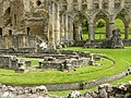 Rievaulx Abbey - geograph.org.uk - 445484.jpg