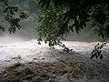Riu desbordat (11).JPG