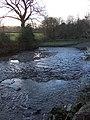 River Lew below Rutleigh - geograph.org.uk - 332499.jpg