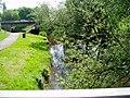 River Sow, Stafford - geograph.org.uk - 182489.jpg