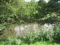 River Teme, Burford - geograph.org.uk - 909837.jpg