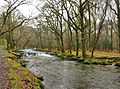 River Walkham below Grenofen Bridge.jpg