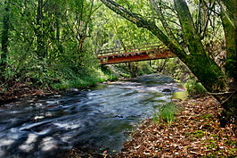 River in harrietville trout farm.jpg