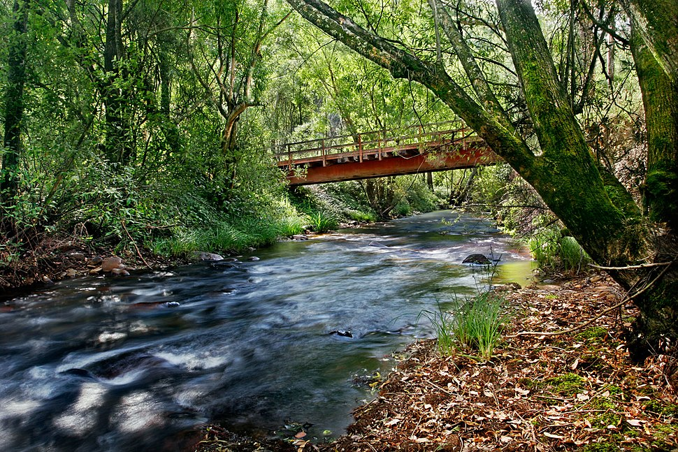 River in harrietville trout farm