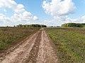 Road - panoramio (175).jpg