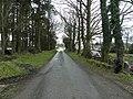 Road at Booragh - geograph.org.uk - 1757259.jpg