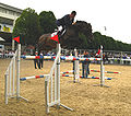 Robert Smith & Vangelis S - Dublin CSIO5 2008.jpg