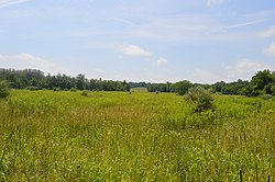 Rocky Fork Park Site overview.jpg