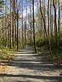 Roswell Riverwalk Trail, March 2018 2.jpg