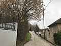 Rue des Montelières (Saint-Maurice-de-Beynost) - 2.JPG