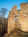 Ruine-Rauheneck-270216-2278389.jpg