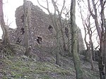 Ruins of Ravenscraig Castle - geograph.org.uk - 481419.jpg