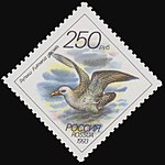 Russia stamp 1993 № 108.jpg