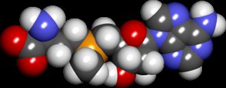 S-Adenosyl methionine - Image: S adenosylmethionine spacefill