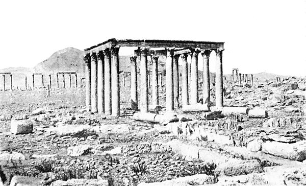 A few of the ruins which crowd the site of ancient Palmyra