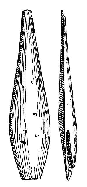 Aurignacian