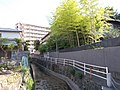 Sagita River in Futsukaichi Onsen.jpg