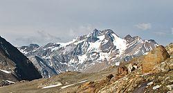 Saldurkamm Ötztal Alps 2008 07 01.jpg