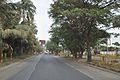 Salt Lake Bypass - Kolkata 2012-01-19 8396.JPG