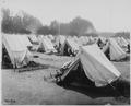 San Francisco Earthquake of 1906, Refugee camp, probably (located) in the Presidio of San Francisco - NARA - 531020.tif