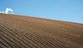 Sand Dune (2279712964).jpg