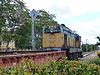 Santa Clara-Train (3).jpg