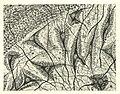 Santiago Ramon y Cajal cells.jpg