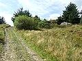 Sarn Helen Roman Road - geograph.org.uk - 975879.jpg