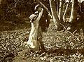 Satan Junior (1919) - 2.jpg