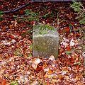 Schmiedeberg Pöpeltal historischer Grenzstein am Obstfluß.jpg