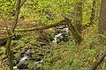 Schonach im Schwarzwald - entlang der Elz Bild 3.jpg