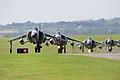 Sea Harriers - RNAS Culdrose (2408542670).jpg