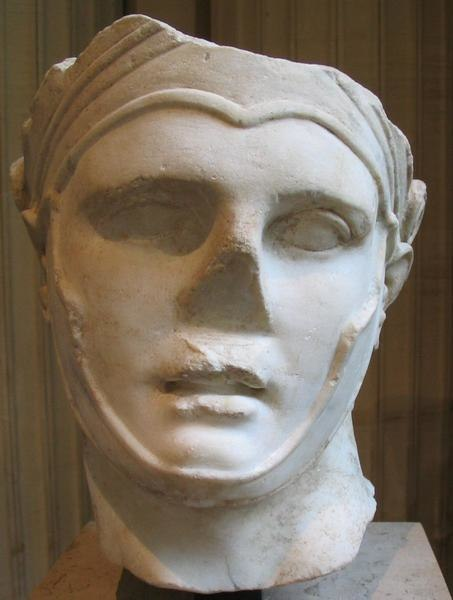Seleucus nicator